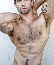 MALE BODYBUILDERS AND FITNESS MODELS.
