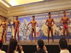 Chilean national championship 2013-under 18 years