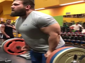 massive bear at gym
