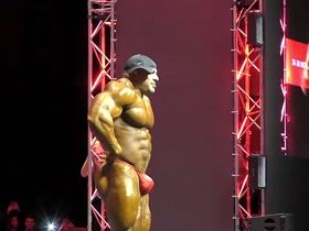 Big BIG Bodybuilder