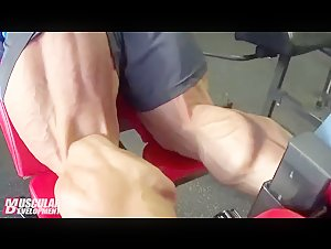steve cuclo workout calves